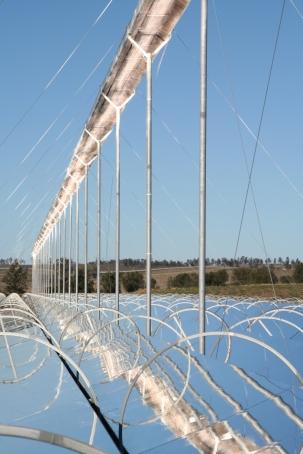 ausra-solar-field.jpg